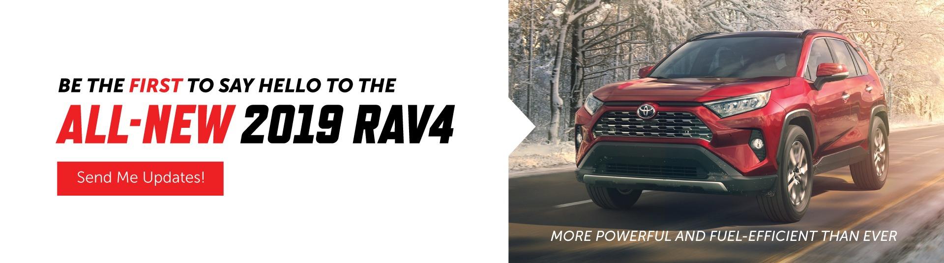 2019 RAV4 in Goderich